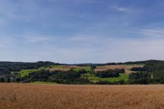 Blick-auf-Gemuenden-Heinzenberger-Feld